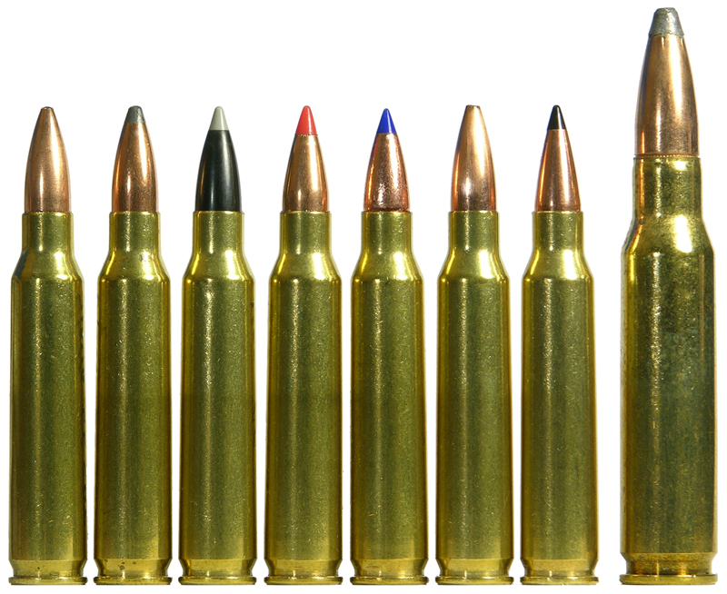 .223 REM: The All-Purpose Ammunition